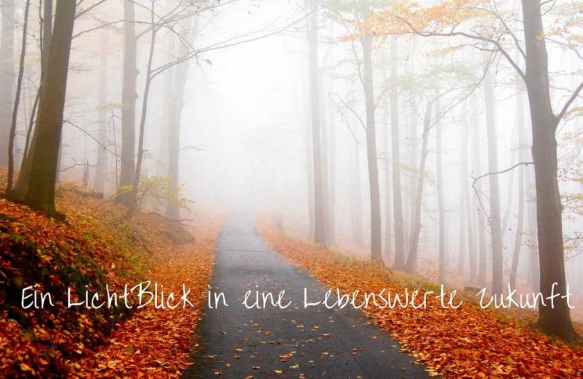 blog-15-10-16